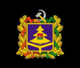 Сайт департамента здравоохранения Брянской области подключен к ЕСИА