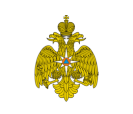 МЧС России обеспечило возможность идентификации пользователей через ЕСИА при подаче обращений