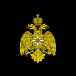Проект МЧС России